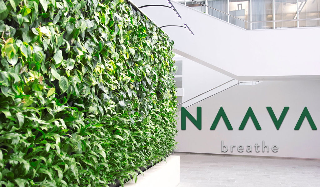 Naava Living green wall by Open Mind Interiors